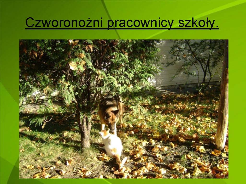 prezentacja_som_Strona_34